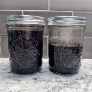 Homemade Elderberry Syrup